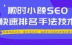 顺时学院小颜哥seo视频教程 适用于灰色和白色行业 2020SEO教程