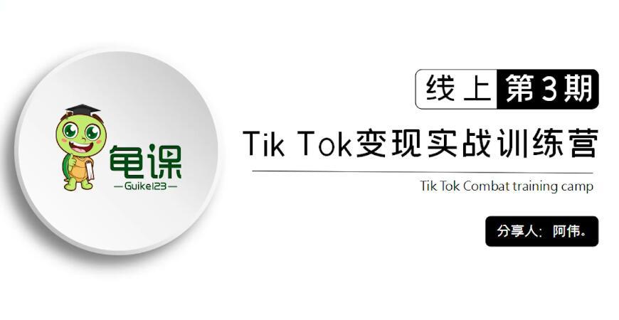 龟课·Tik Tok变现实战训练营线上第1-3期插图